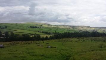 Mein smaragdgrünes Yorkshire.