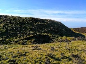 Die Ruinen von Buckton Castle sind unter Gräsern und Torf verborgen.